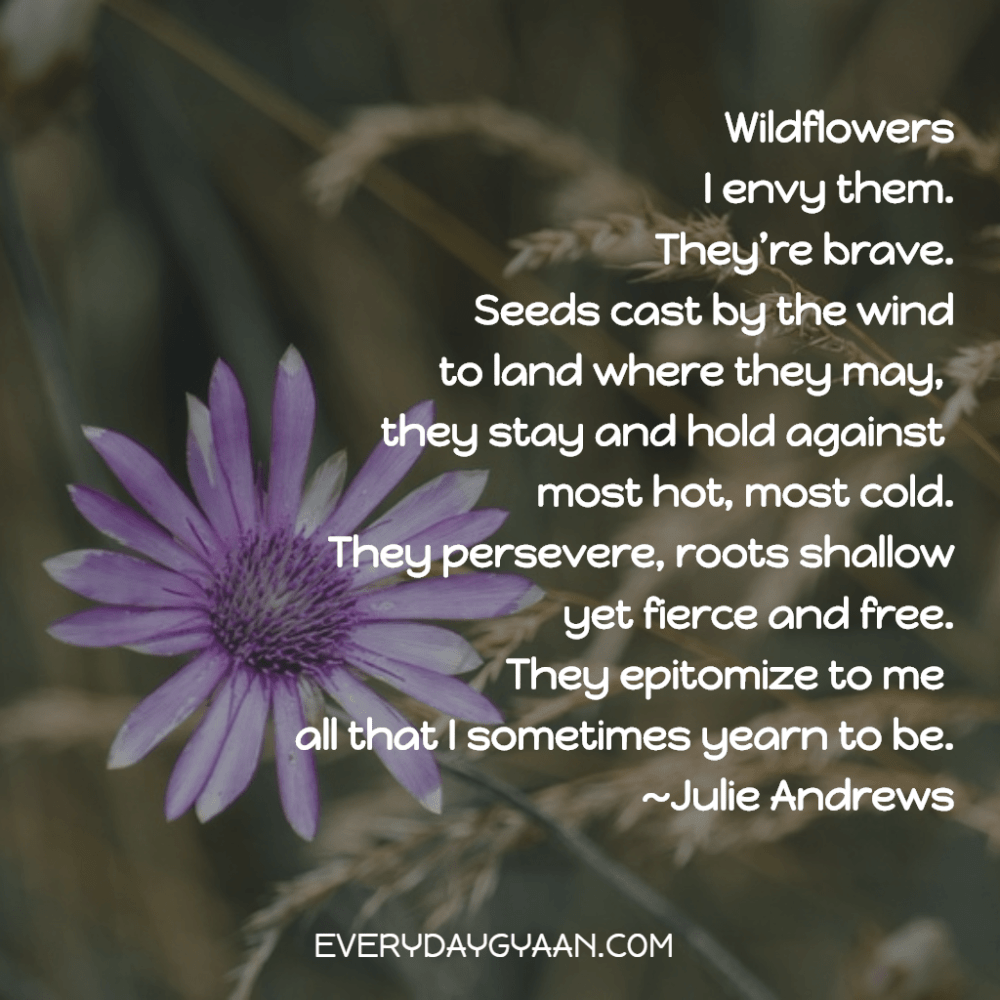 To Be A Wildflower #MondayMusings