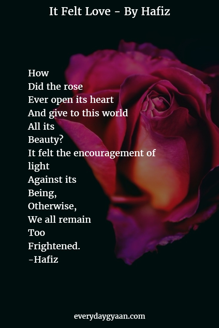 How Did the rose Ever open its heart And give to this world All its Beauty? It felt the encouragement of light Against its Being, Otherwise, We all remain Too Frightened. -Hafiz