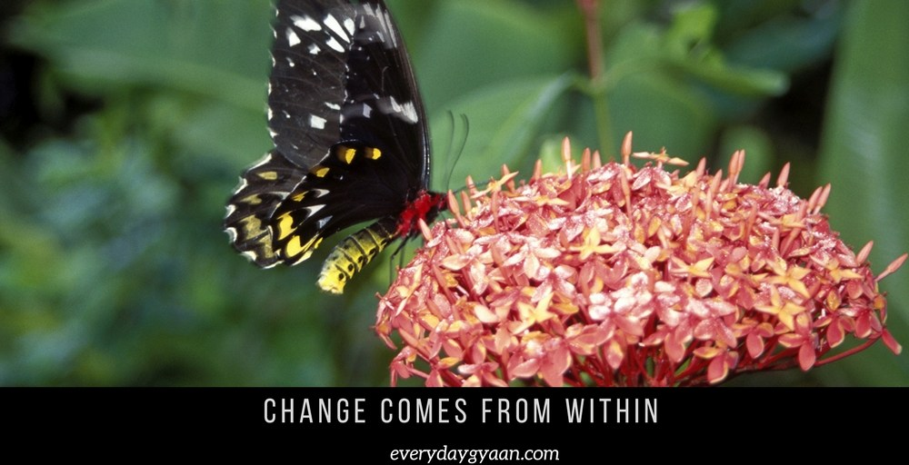 Change Comes From Within #MondayMusings