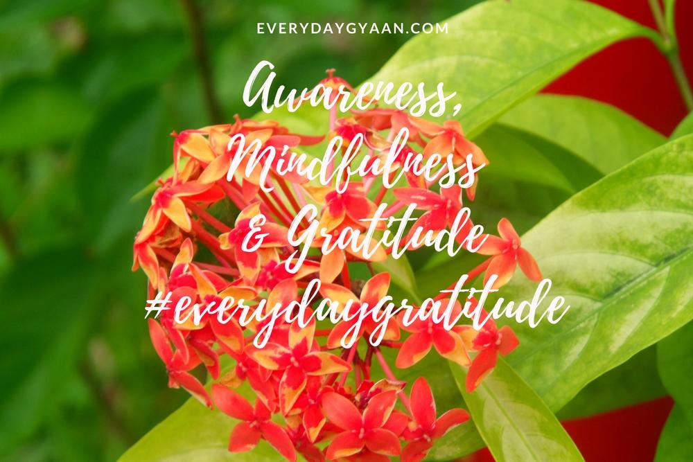 Awareness Mindfulness and Gratitude #everydaygratitude
