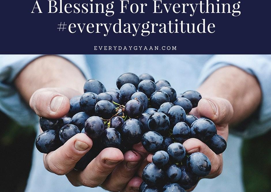 A Blessing For Everything #everydaygratitude
