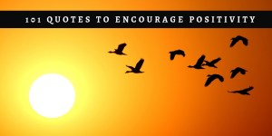 101 Quotes to Encourage Positivity