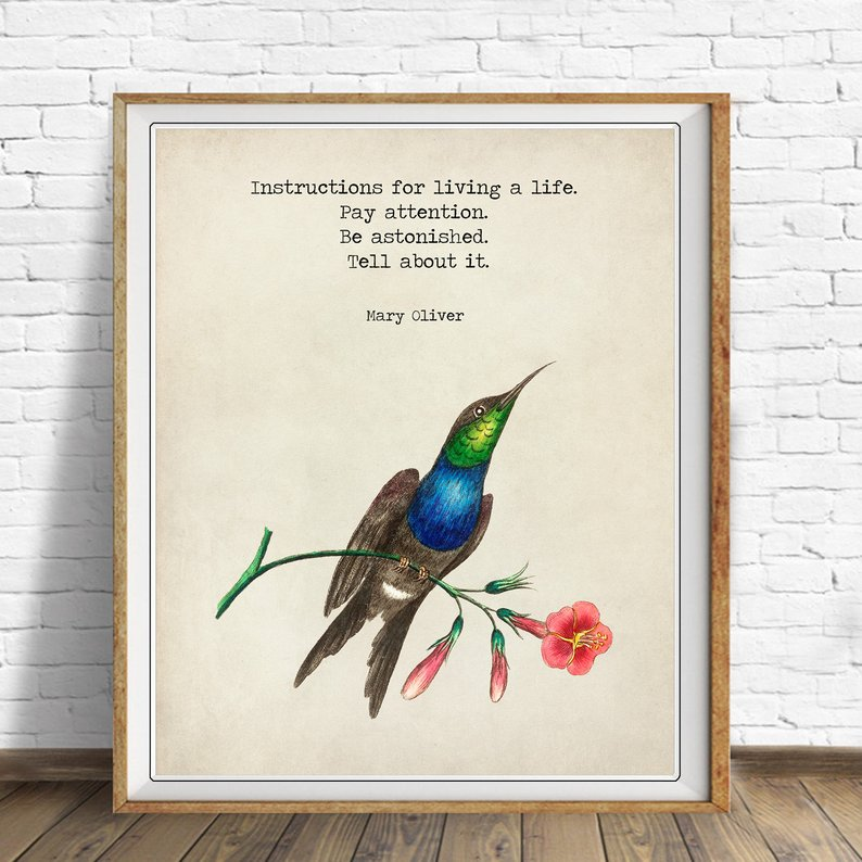 Poetry Art: Quotes from Mary Oliver #WorldPoetryDay