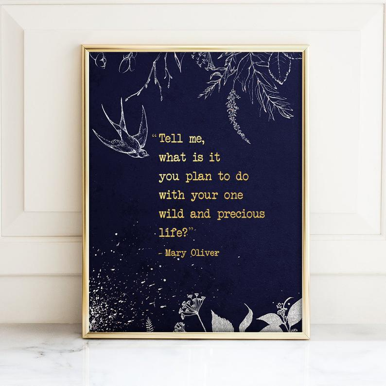 poetry art : mary oliver quote
