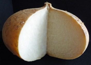 Jicama (c) jfhaugen