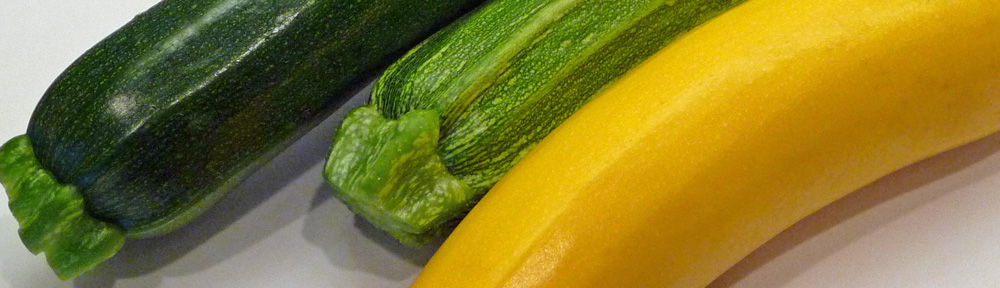 Savory Zucchini Pancakes w Parsley, Basil, Green Onions & Thyme