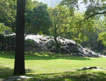 New York City Highlights—Apples to Za'atar, Part 2