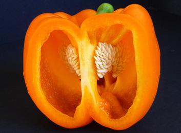 Peperonata — Bold & Versatile Italian Stewed Sweet Peppers