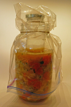 White Kimchi Step-by-Step