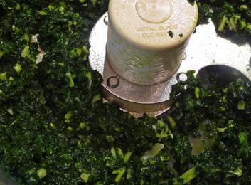 Tuscan Kale Pesto