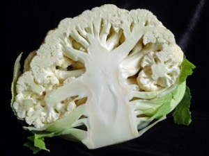 Roasted Cauliflower Salad w/ Mediterranean Flair
