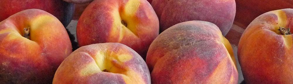 Fresh Peach Shortcakes – Gluten-Free and Peachy-Keen