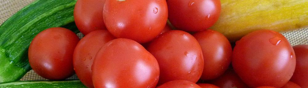 Zucchini Romano – Everyday Healthy! Everyday Delicious!