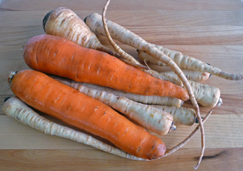 Braised Carrots and Parsnips Simply Cooked in Vegetable Stock, Butter and Salt