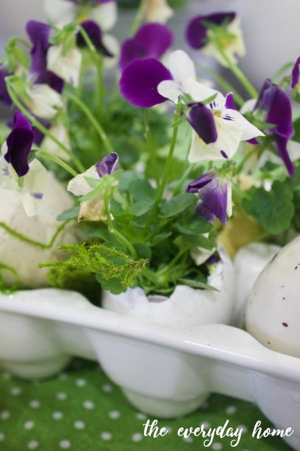 Eggshell Planters for Spring | The Everyday Home | www.everydayhomeblog.com