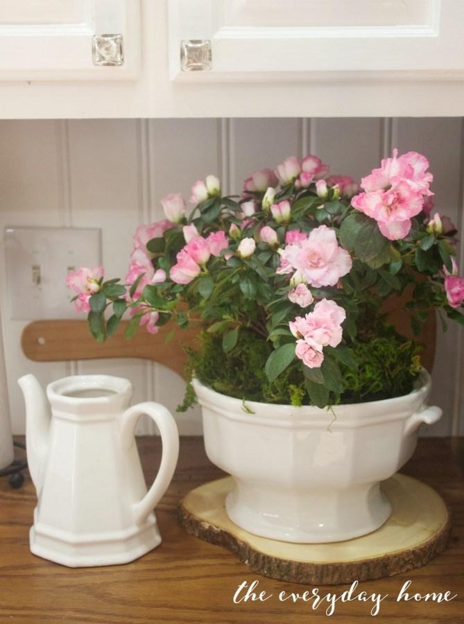 Spring kitchen Tour   Pink Azalea   The Everyday Home