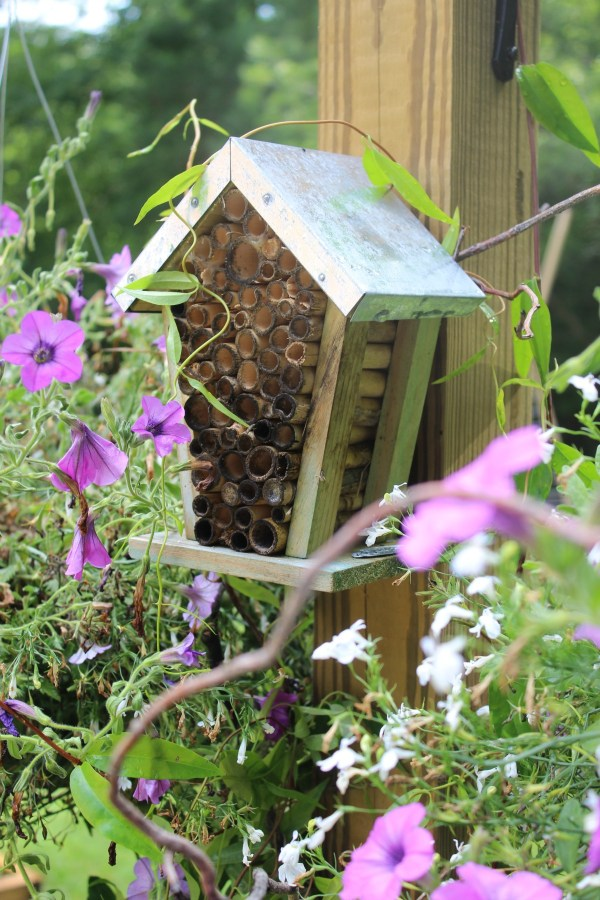 Bee House in the Garden   The Everyday Home