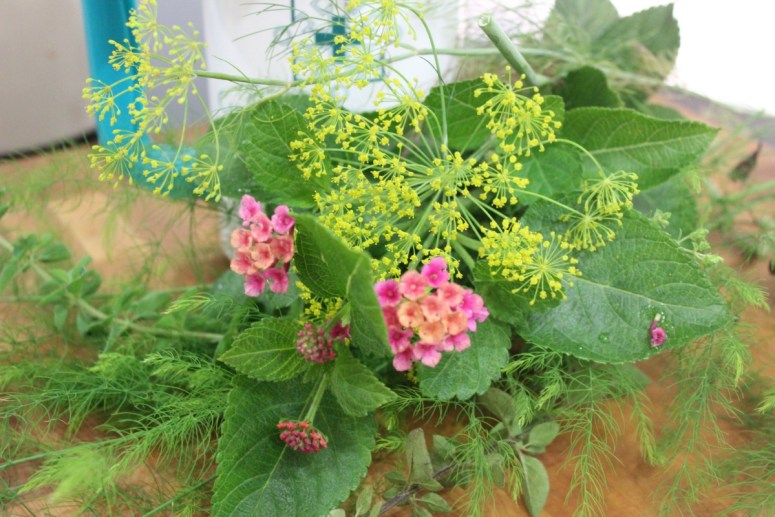 flowers from the garden   The Everyday Home