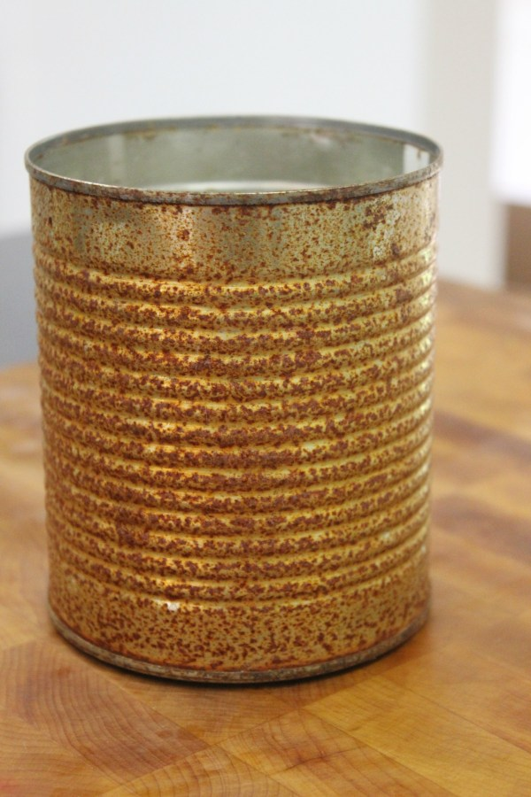 How to Make a Can Rusty Quick   The Everyday Home