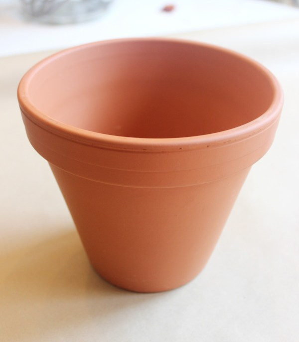 Plain Terra Cotta Pot | The Everyday Home