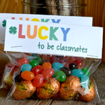 Lucky to be Classmates Treat Bag Topper Printable