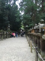 Path towards Kasuga Taisha
