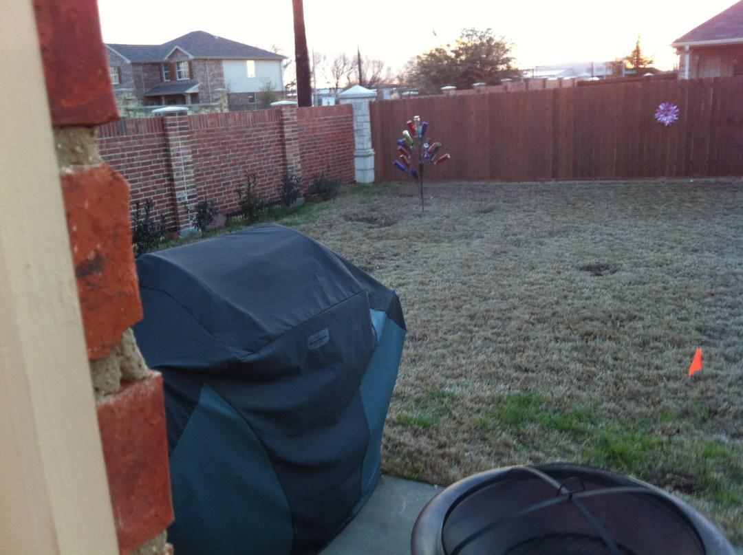 ugly backyard makeover