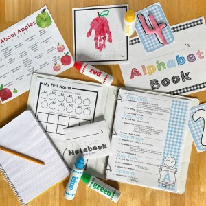 Little Lessons Learn + PLAY Curriculum