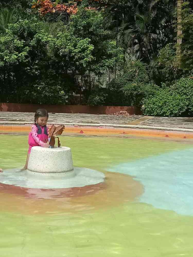 Momarco Forest Cove and Resort Baby Pool