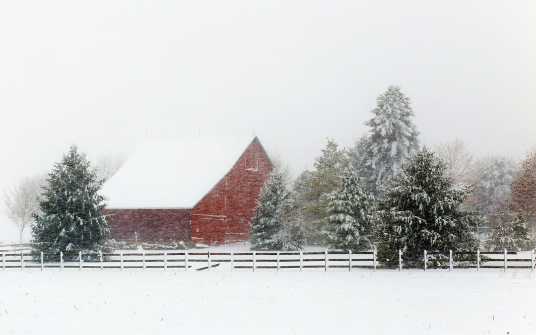 the little red barn that could