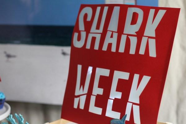 Everyday Party Magazine shark Week 2015 22