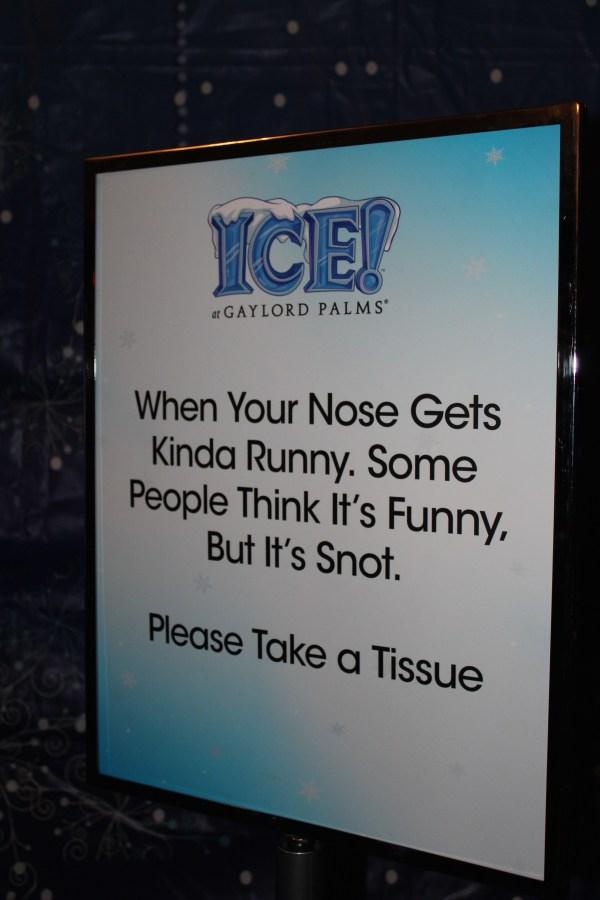Everyday Party Magazine Celebrating at ICE!