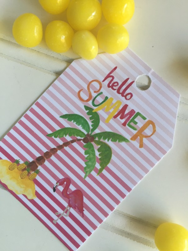 Everyday Party Magazine Hello Summer Free Printable Tag