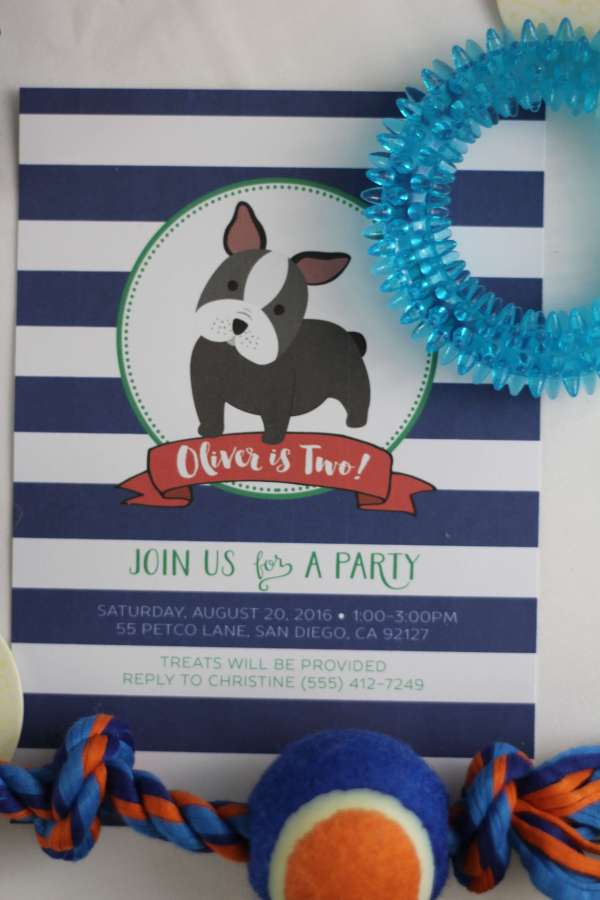 Everyday Party Magazine Dog Birthday Party