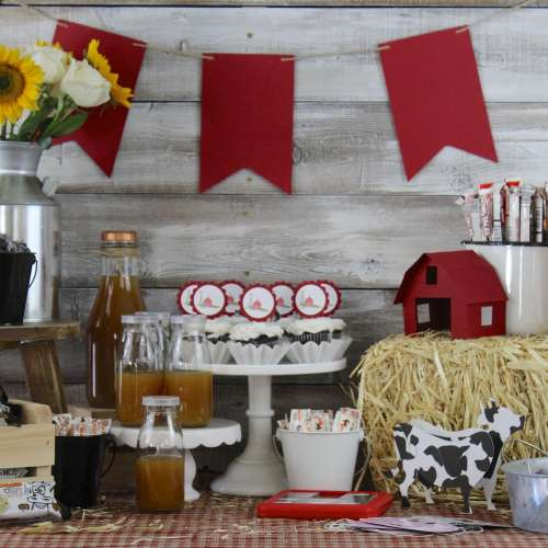Everyday Party Magazine Fall on the Farm Party