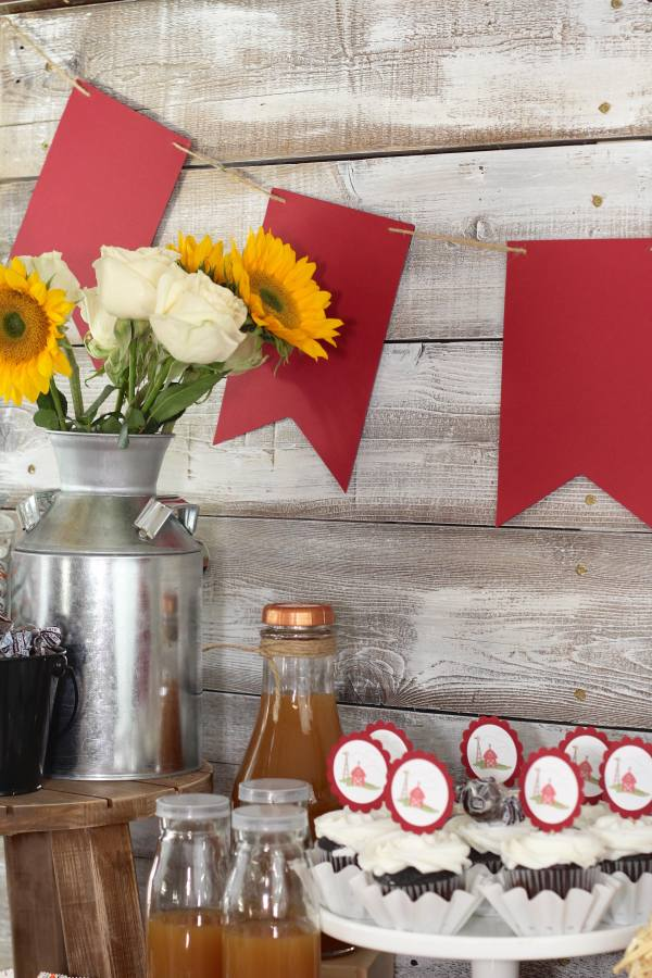 everyday-party-magazine-fall-on-the-farm-party-2