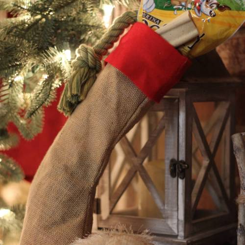 Everyday Party Magaizne Simple No Sew Stocking DIY