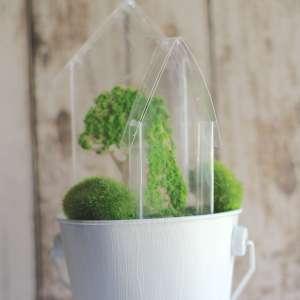 Everyday Party Magazine Tiny Greenhouse Decor