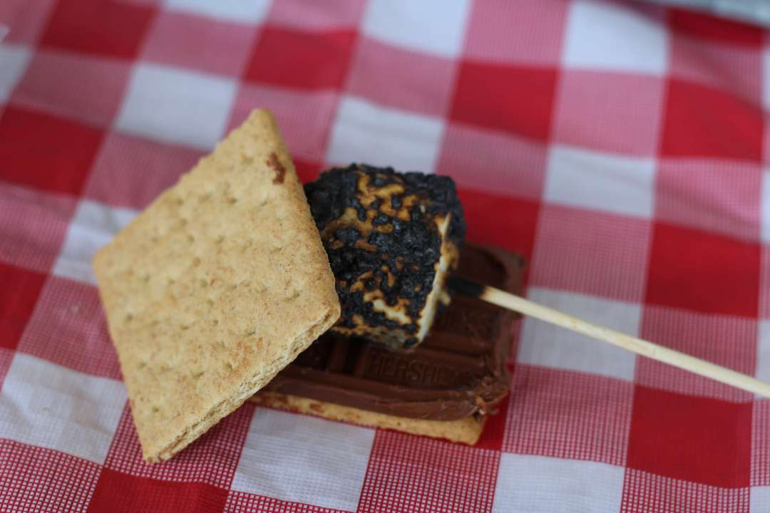 Back Yard BBQ, Red Gingham, Vintage, S'mores, DIY, Backyard Party, S'mores