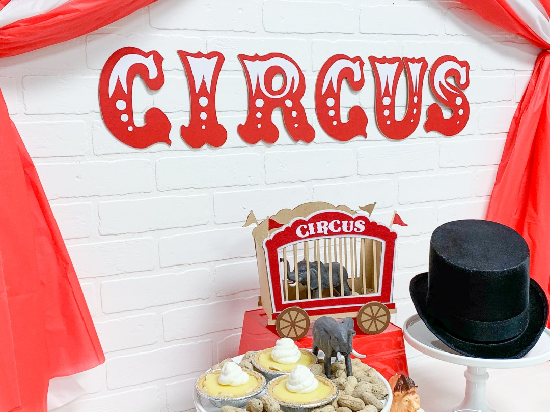 Circus Party