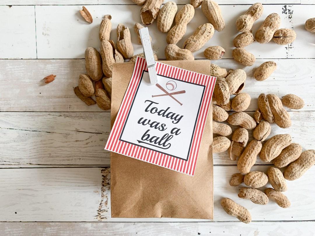 Baseball Tag Peanuts Paper Bag