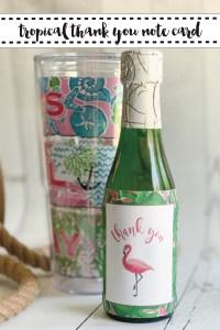 Flamingo Champagne Bottle Tervis Tumbler Sea Rope
