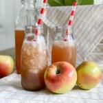 Apple Cider Apples