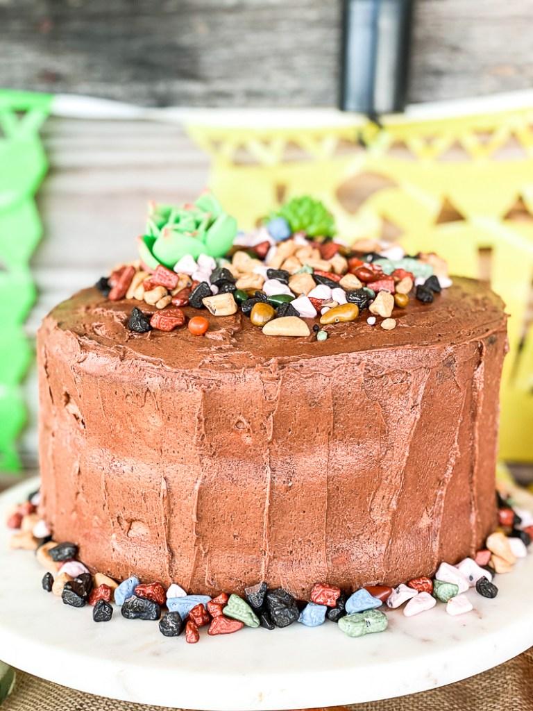 Taco Bar Party Cake