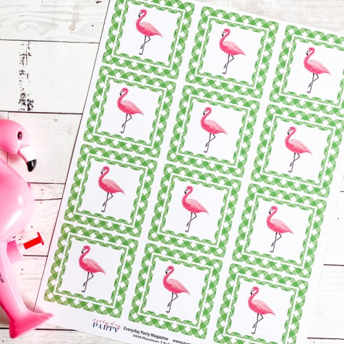 Flamingo Party Circles