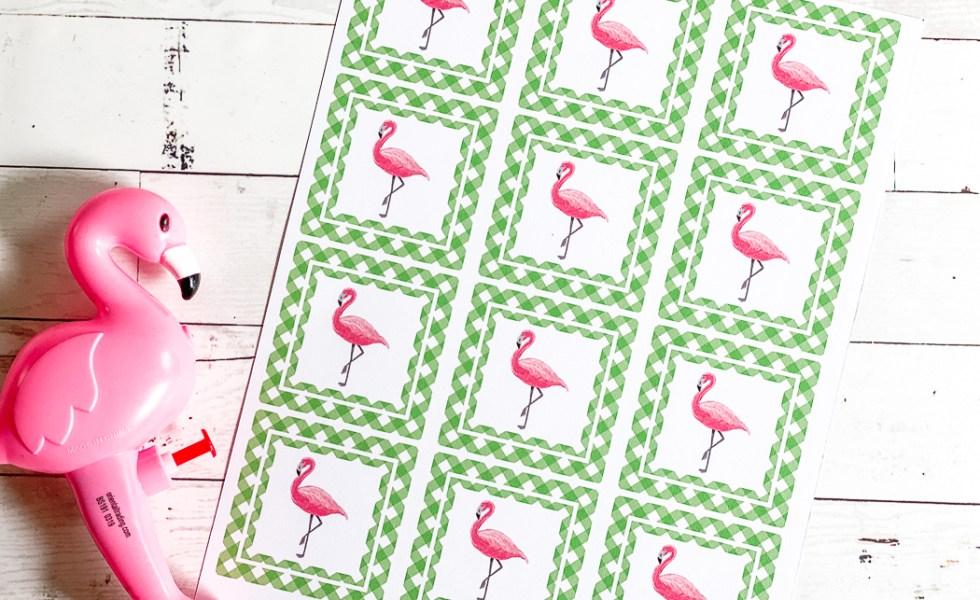 Flamingo Party Circles