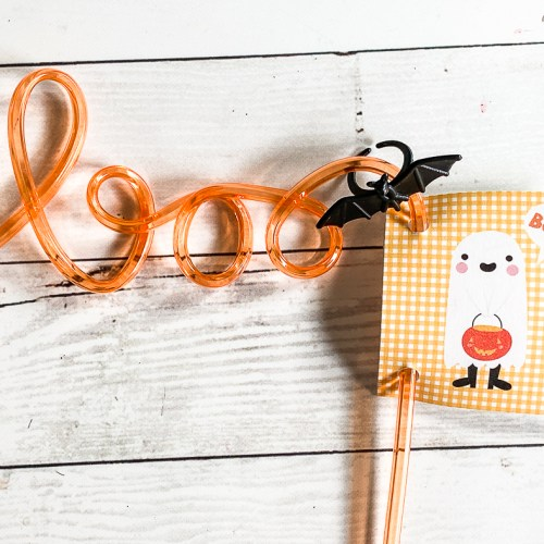 Halloween Boo Straw and Tag
