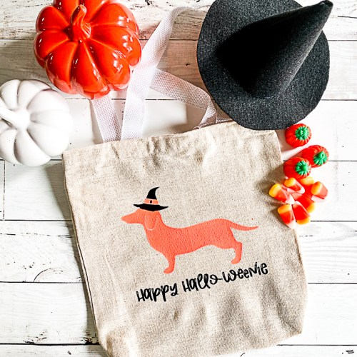 Hallo-Weenie Treat Bag