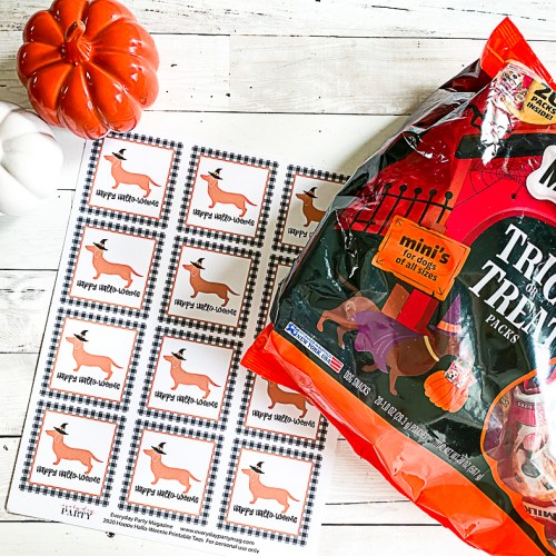 Trick or Treat Dog Treats