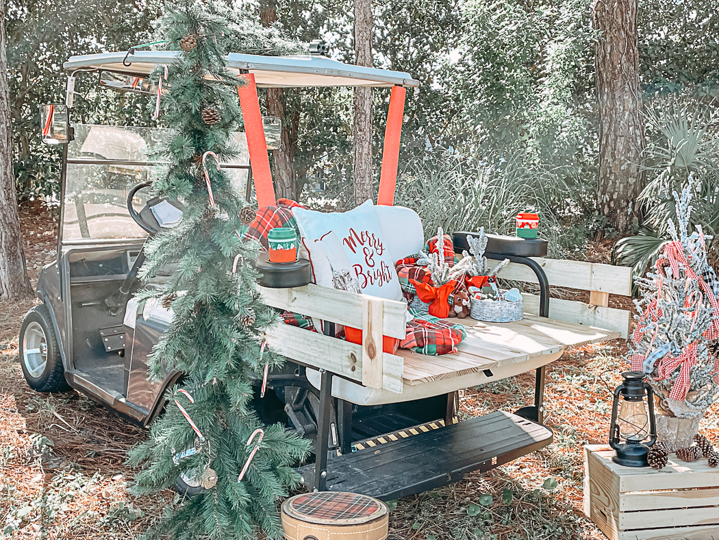 Winter Golf Cart Decorations